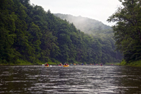 National-Wild-&-Scenic-Allegheny-River---Piper-VanOrd-photo